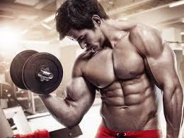 Flexuline Muscle Builder - pour le renforcement musculaire - comment utiliser - avis - effets secondaires