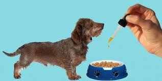 Essential CBD Extract For Pets - France - composition - site officiel