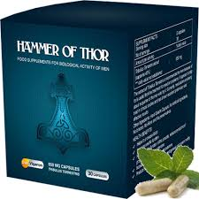 Hammer Of Thor - pour la puissance - site officiel - France - composition